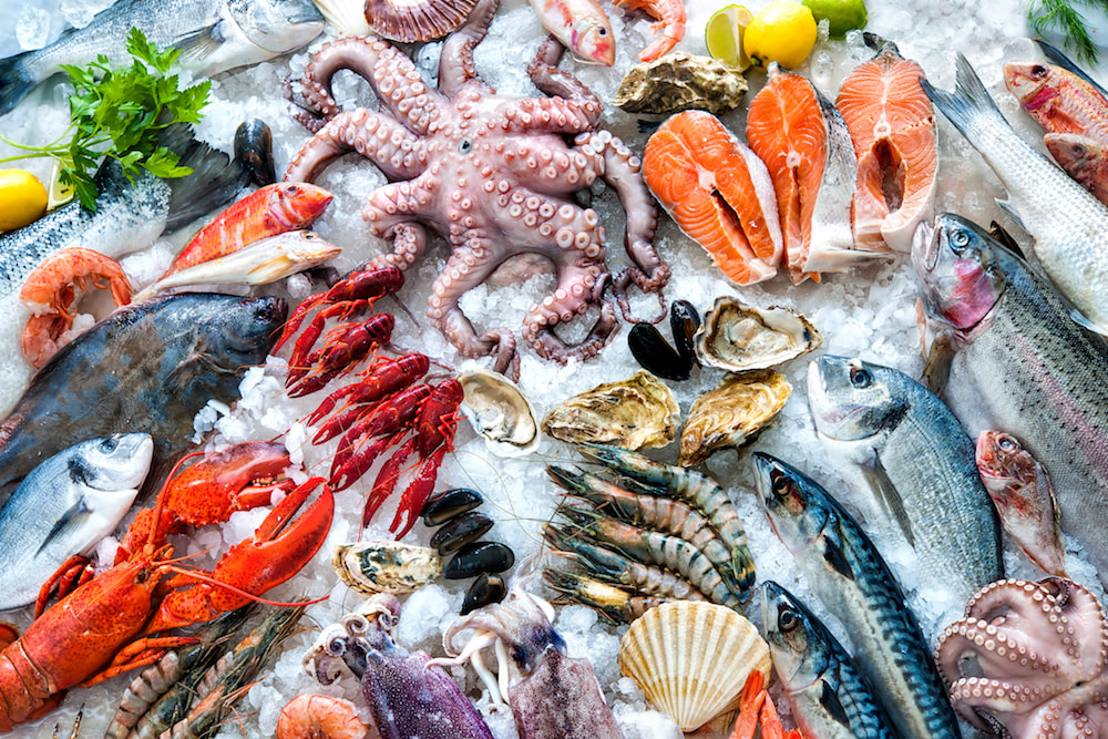 Seafood is the escape route for developing countries to stay away from food crisis