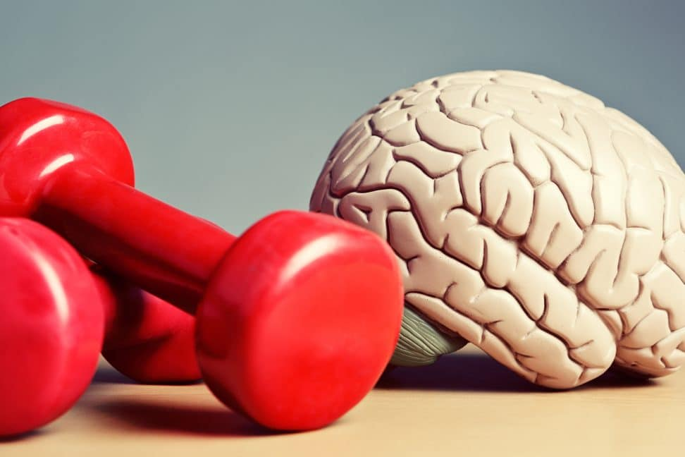 Include aerobic & resistance training for brain health