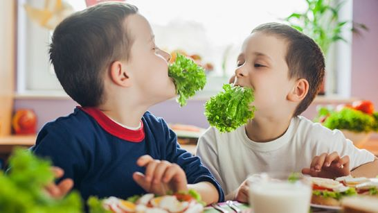 Vegetable intake increases when kids are offered a variety of vegetables rather than a single one