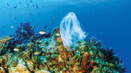 Marine life is threatened with extensive plastic usage